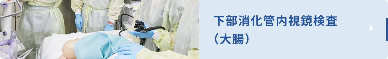 下部消化管内視鏡検査とは大腸(結腸と直腸)と小腸の一部を指し、肛門から内視鏡を挿入します。